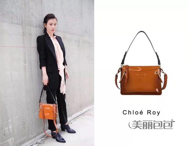 chloe roy复古包哪款颜色比较好看?