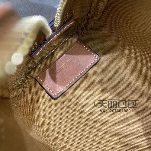 比lv nano speedy更时髦可爱的迷你枕头包 只有思琳了
