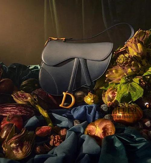 又是刺绣又是渐变色,lady dior、dior caro、30 montaigne、booktote、saddle...2021春夏新款迪奥包包太美了!