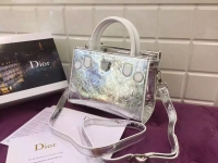 倪妮 唐嫣同款Dior Diorever手提包 金属色褶皱牛皮闪耀摩登